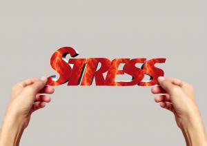 Efectos negativos del estres
